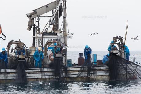 漁師 FYI01030452