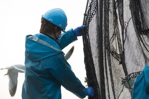作業する漁師 FYI01030458