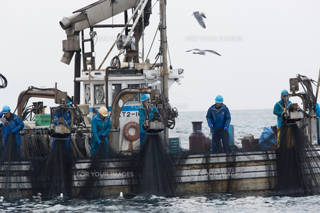 漁師 FYI01030467