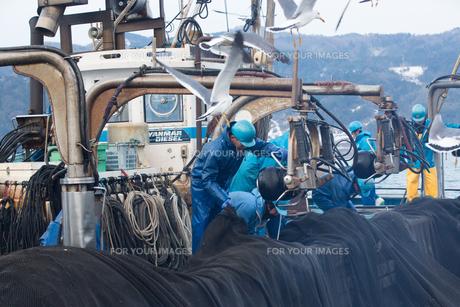 漁師 FYI01030469