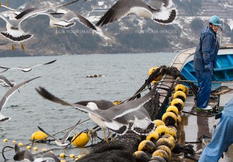 作業する漁師 FYI01030505