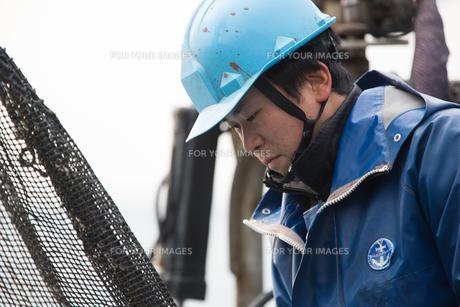 作業する漁師 FYI01030506