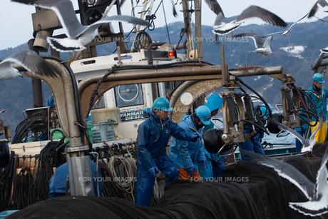 作業する漁師 FYI01030522