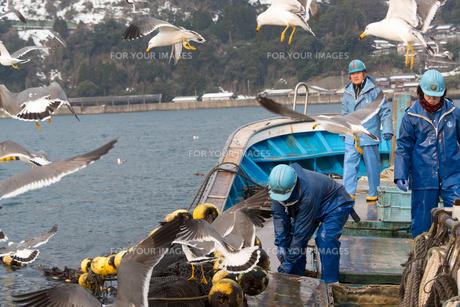 作業する漁師 FYI01030540