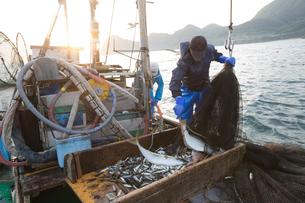定置網漁の男性 FYI01030542
