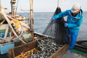 定置網漁の男性 FYI01030557