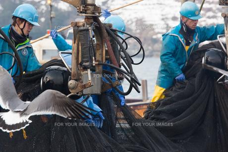 漁師 FYI01030585