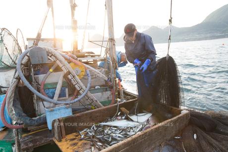 定置網漁の男性 FYI01030586