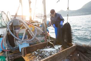 定置網漁の男性 FYI01030587