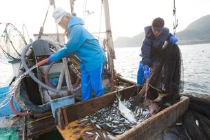 定置網漁の男性 FYI01030590