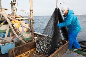 定置網漁の男性 FYI01030619