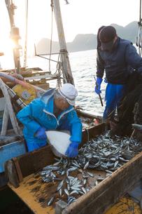 定置網漁の男性 FYI01030648