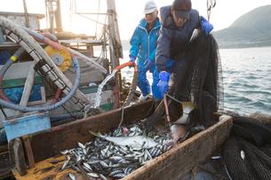 定置網漁の男性 FYI01030652