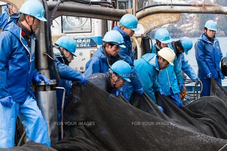 漁師 FYI01030669