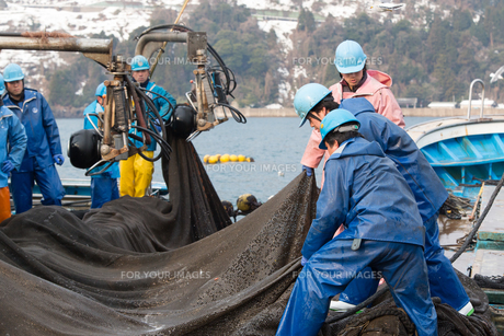 漁師の素材 [FYI01030677]