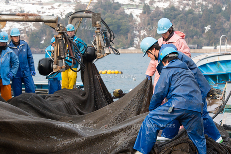 漁師 FYI01030695