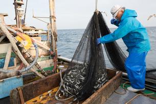 定置網漁の男性 FYI01030701