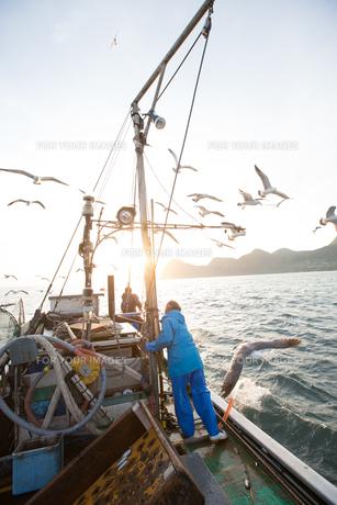 定置網漁の男性 FYI01030717