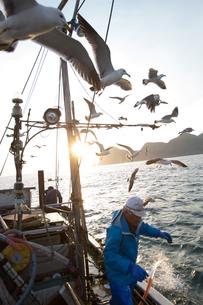 定置網漁の男性 FYI01030721