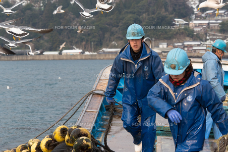 作業する漁師 FYI01030826