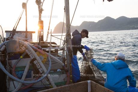 定置網漁の男性 FYI01030827