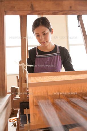 大島紬を織る女性 FYI01030861