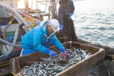 定置網漁の男性 FYI01030863