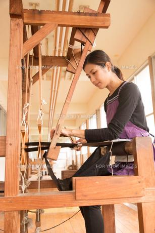 大島紬を織る女性 FYI01030945