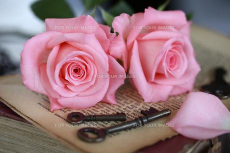 バラとキーと洋書 FYI01037459