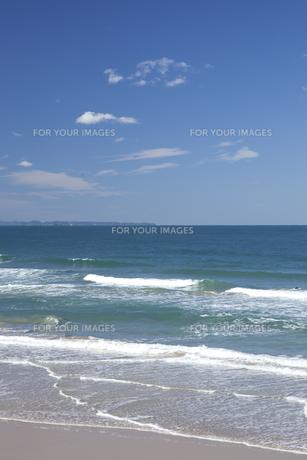 海と浜辺 FYI01053231