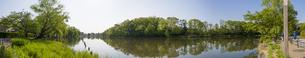 石神井公園・石神井池(北側よりパノラマ) FYI01057070