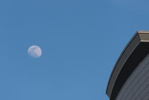 日暮れ前の月 FYI01057091