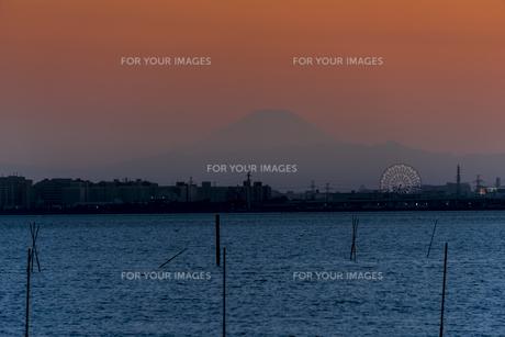 ふなばし三番瀬海浜公園から見える富士山 FYI01057185