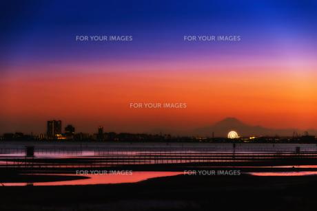 三番瀬海浜公園から遠望の富士山 FYI01057190