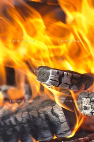 焚き火の炎 FYI01059099