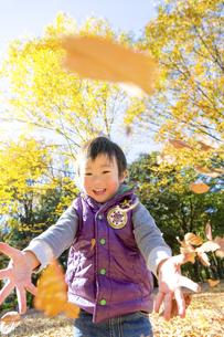 秋の公園で落葉を投げて遊ぶ男の子 FYI01075016