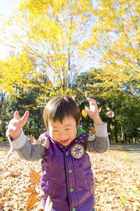 秋の公園で落葉を投げて遊ぶ男の子 FYI01075034