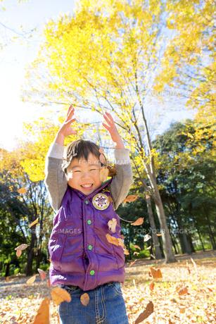 秋の公園で落葉を投げて遊ぶ男の子 FYI01075052