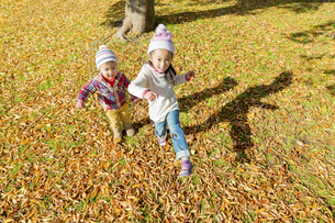 秋の公園を走る姉と弟 FYI01075115