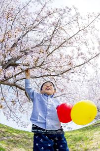 桜の咲く土手で遊ぶ男の子 FYI01075175