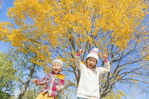 秋の公園で落葉を投げる姉と弟 FYI01075197