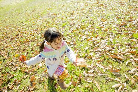 落葉の公園を葉っぱを持って走る女の子 FYI01075547