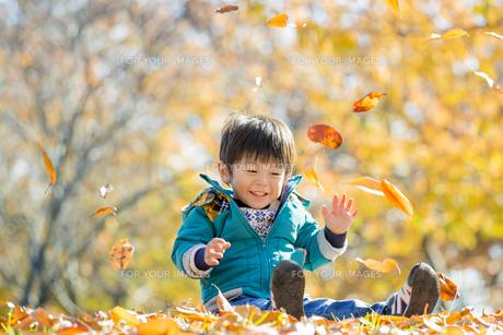 紅葉の公園で遊ぶ男の子 FYI01075556