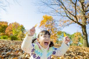 紅葉の公園で葉っぱを持って笑う女の子 FYI01075596