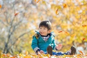 紅葉の公園で遊ぶ男の子 FYI01075597