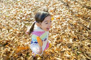 落葉の公園を葉っぱを持って走る女の子 FYI01075620