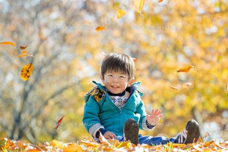 紅葉の公園で遊ぶ男の子 FYI01075634