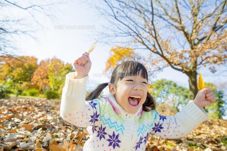 紅葉の公園で葉っぱを持って笑う女の子 FYI01075710