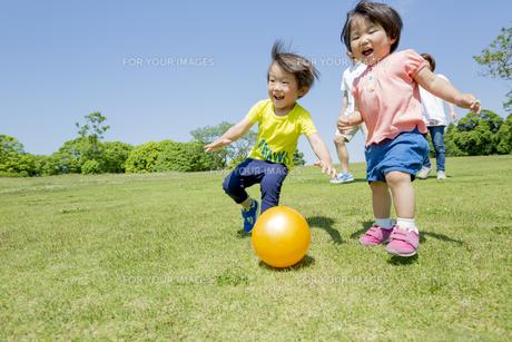 新緑の公園を走る4人家族 FYI01075759