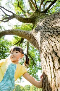 公園の木の下に立つ女の子 FYI01075899